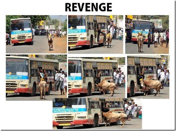 sweet-revenge-justice-9