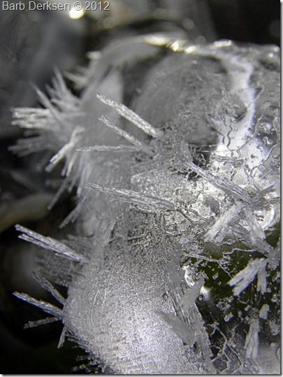 Barb Derksen Ice 2012  (19)