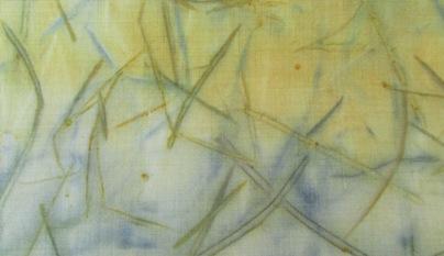 ECO PRINT Blutpflaumenrinde auf Wolle Detail 2