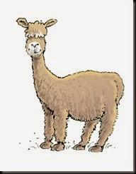 alpaca1a