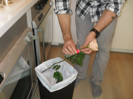 Here, Tom uses the stem stripper to take off several extra leaves. This rose is a Sahara.Using the stem stripper makes the job quick and easy and you won't have to come in contact with any nasty thorns.