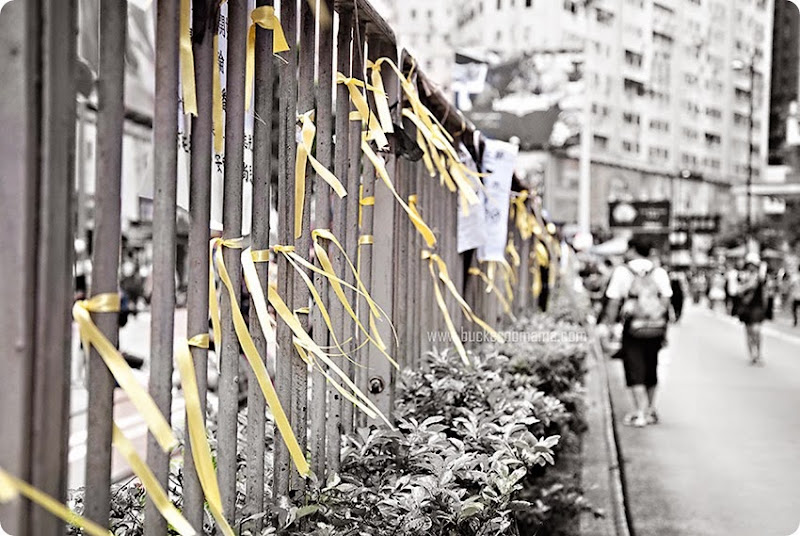 Yellow-ribbons-(1)