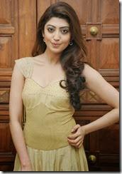 Pranitha-subhash-latest-gorgeous-photos