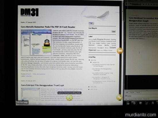 Membuat screenshot website menggunakan Snagit