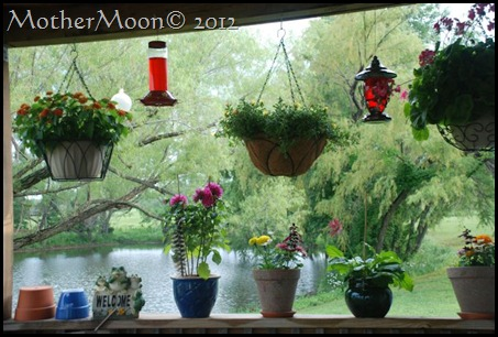 my window 2012