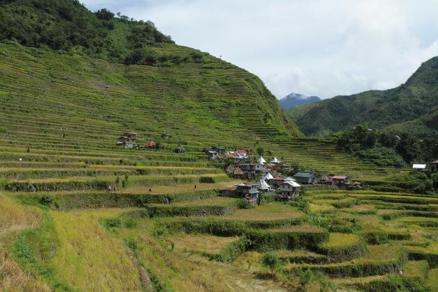 Batad village and the amphitheater rice terraces surrounding it