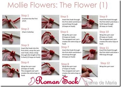 flores b