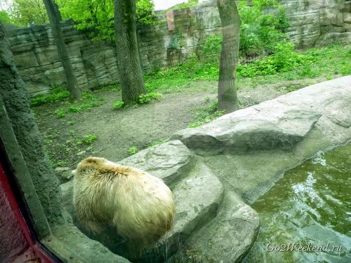 Kiev_Zoo_19.jpg