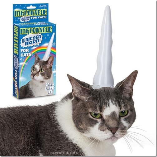 Catsloveit