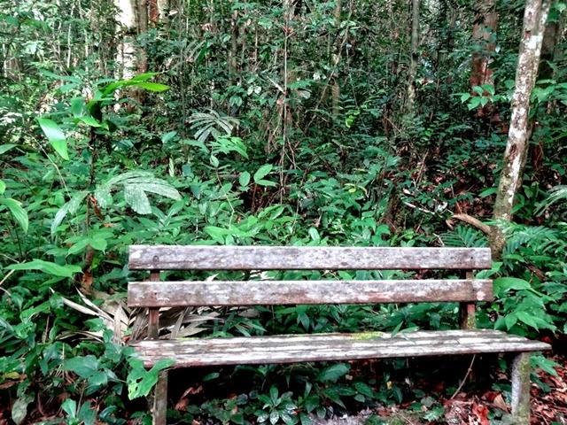 Arboretum7