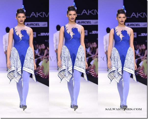 Lakme_Fashion_Week_2012 (4)