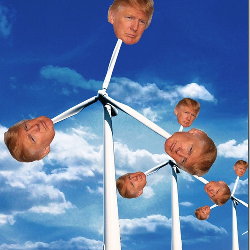 Donald Trump Does U-Turn On Scottish Wind Turbines
