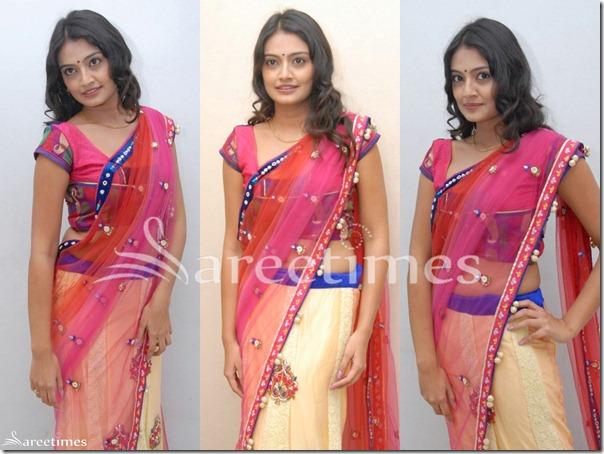 Nikitha_Narayan_Saree