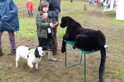 Bushcraft show pets