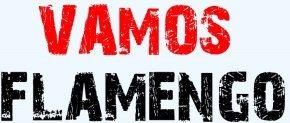 vamos Flamengo - heptacampeão brasileiro