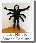 Last-minute-spider-costume