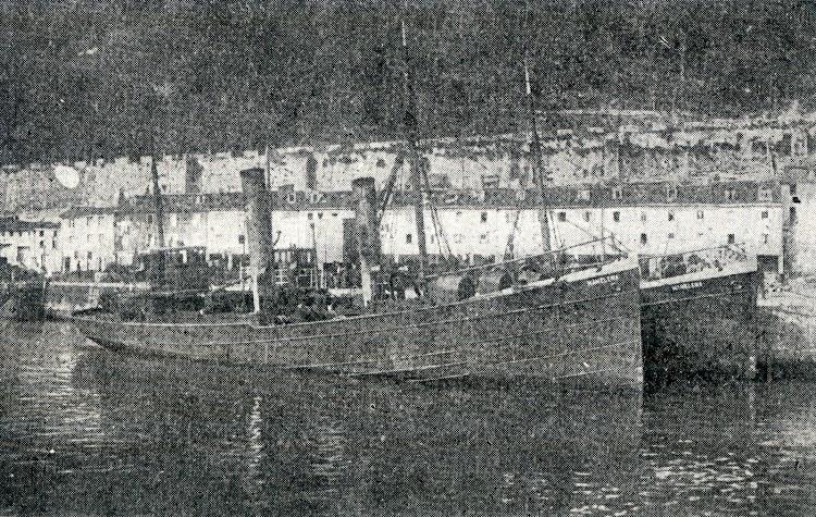 Dos vapores MAMELENA sin número reconocible. Del libro Diccionario de Artes de Pesca de España y sus Posesiones.jpg