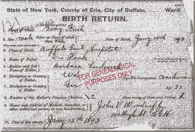 FINK_Henry August_birth record_14 Jan 1954_BuffaloErieNew York