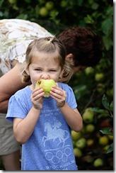 Apple picking Hannah