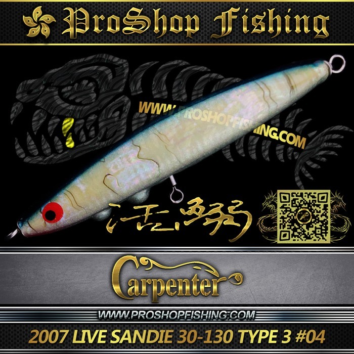 carpenter 2007 LIVE SANDIE 30-130 TYPE 3 #04.3