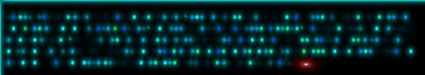Y2-IPPROCESS-CONVOLUTION-NIGHTVISION-RED-SUPRESSED-FRACTALIUS