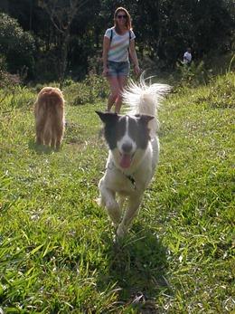 Dogs Trekking 4 (119)