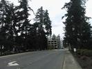 Avenida en el Campus de Microsoft en Redmond