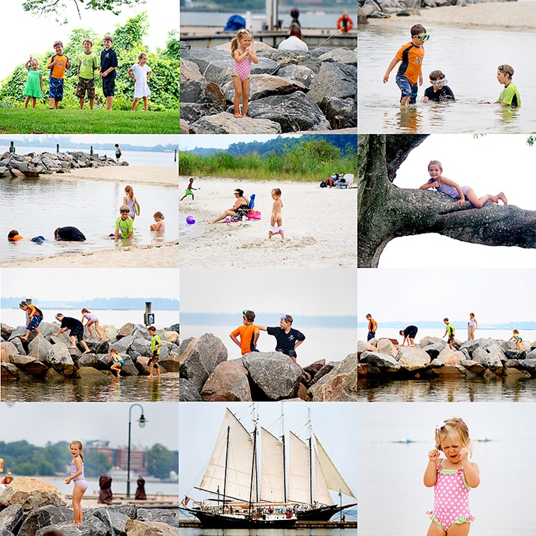 yorktown collage-web