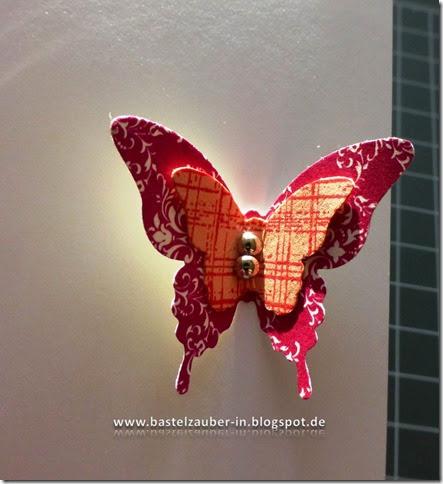 Schmetterlingsverschluß13-fertig