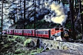 Kalka shimla train.jpg