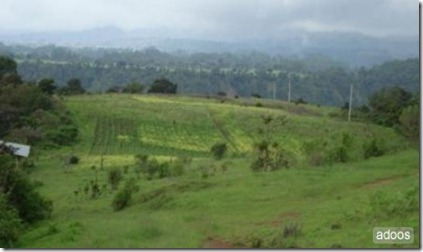 Tecpan scenery