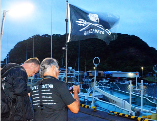 Members of the anti-whaling group Sea Shepherd Conservation Society hoist a banner and observe fishing boats at Taiji port in Wakayama Prefecture on 1 Aug 2014. Photo: Yummin Son / Asahi Shimbun