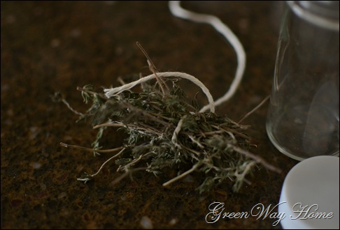 herbs 005