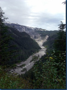 Mt. Rainier (20)