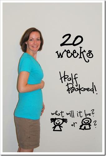 20 weeks.jpg