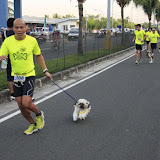 Pet Express Doggie Run 2012 Philippines. Jpg (52).JPG