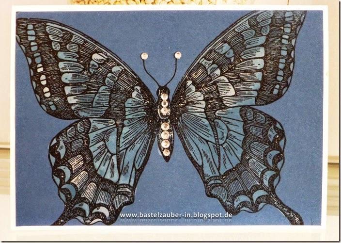Schmetterling gebleicht blau-fertig