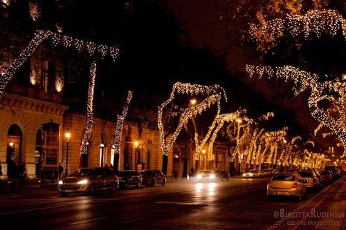 street_20111125_night3