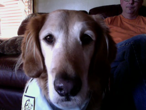 Video call snapshot 7