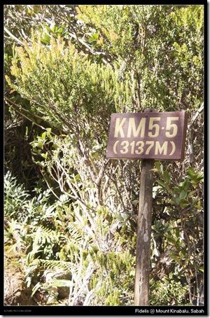 kk135