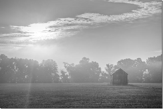 Barn the Mist