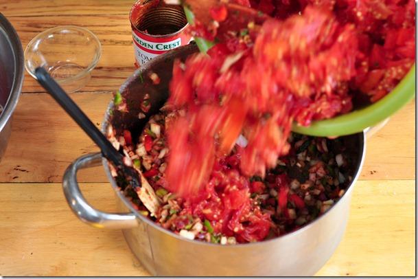 salsa (27 of 63)