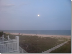 Beach 2011 347