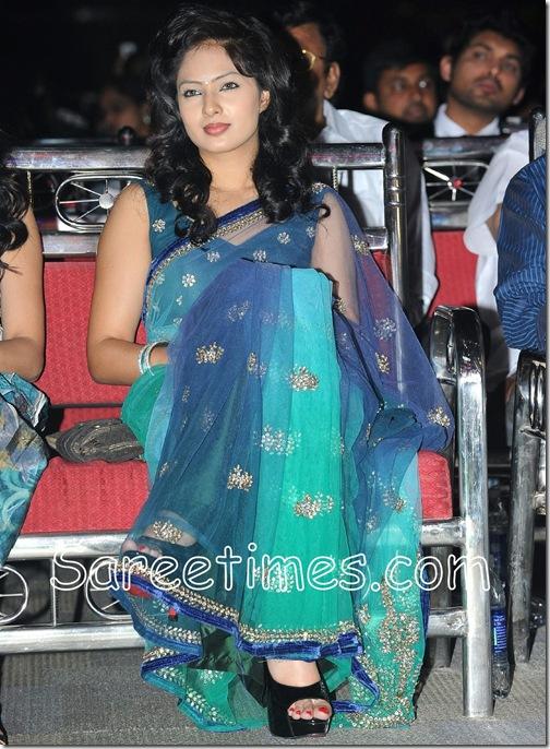 Nikesha_Patel_Shimmer_Saree