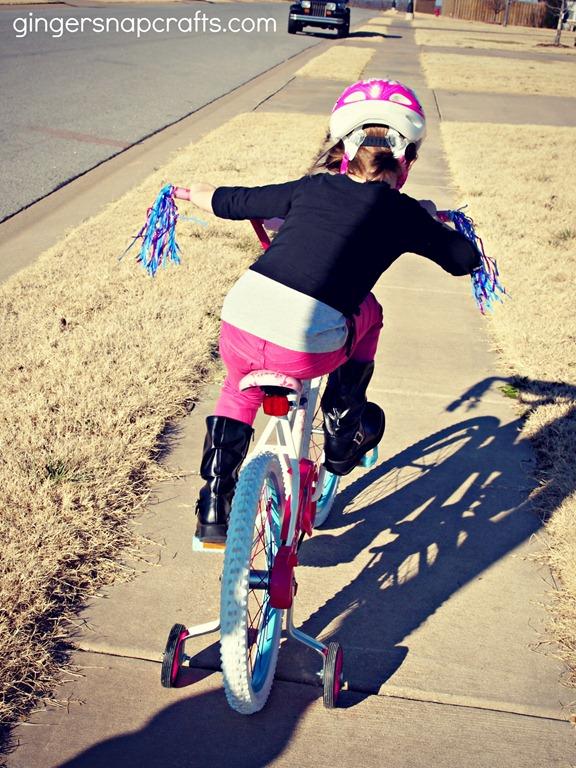 bike wm