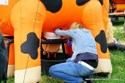 koeien kijken boer martij 18-06-2011 (14).JPG