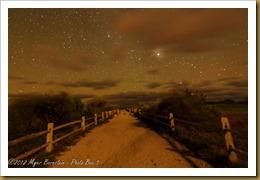 DSC_1062 October 12, 2012 NIKON D3S