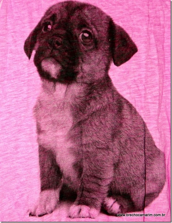 regata pink little dog-002