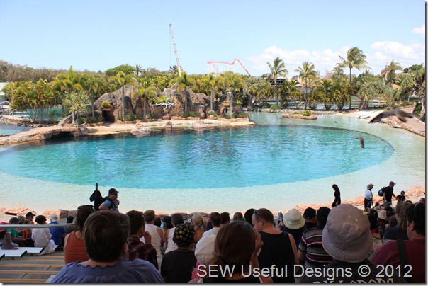 Sea World dolphin show small