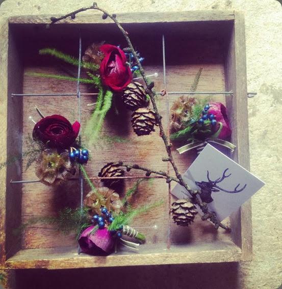 presentation 1484163_243083622523261_1129215447_n amanda taffinder flowers